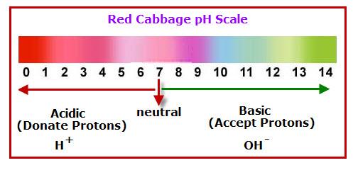 indicator-ph-scale-red-cab